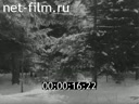 Footage Khrushchev N.S. And Fidel Castro on a hunt in Zavidovo. (1964)