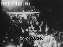 Newsreel Adventures of the Newsreel Cameraman 1930 № 21165