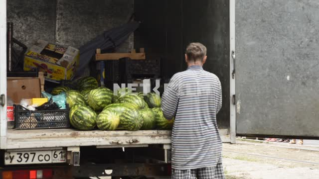Men unload fruit from the body. Men, movers, boxes, fruits, watermelons, grapes, truck, unload Men,...