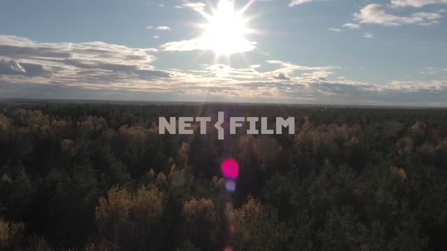 Aerial photography, koperna shooting, forest, beautiful autumn trees, beautiful sky over the forest...
