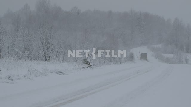 The car drives off into the forest on a snowy road. Russia, forest, snow, snowfall, snowstorm, way,...