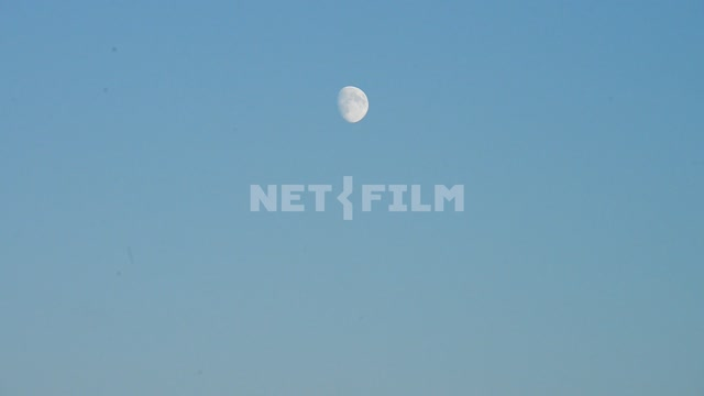 The moon Sky, moon, summer, evening. clear
