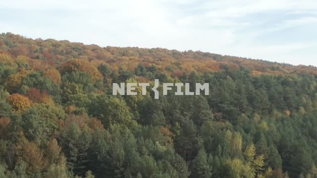 Aerial photo of autumn forest The aerial photo. General plan. Mixed...