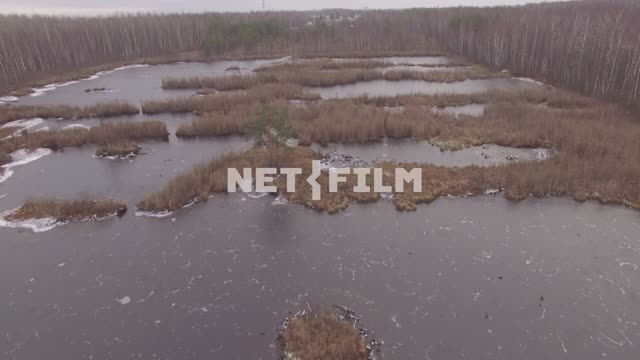 Frozen marsh in autumn forest (shot from a quadcopter) The aerial photo. Nature. General...
