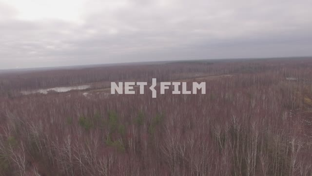 Aerial photo of autumn forest with quadcopter The aerial photo. Nature. Quadcopter Shooting...