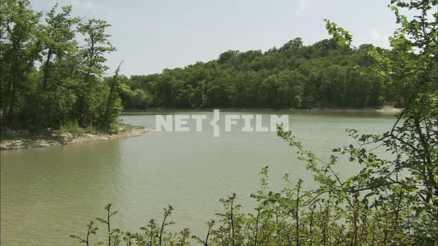 The view of the lake and trees Nature. General plan. River. Shore with trees. Calm water. On a...