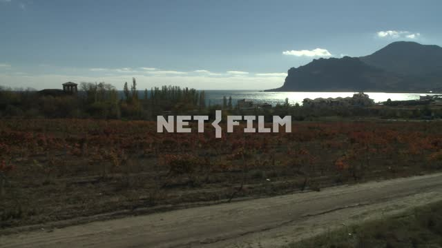 View village of Koktebel and on planting a vineyard. Koktebel, houses, village, mountain, sea,...