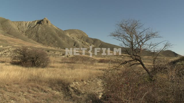 The view of the mountains and the foothills. Koktebel, mountains, bushes, wood.